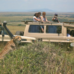 safari_54
